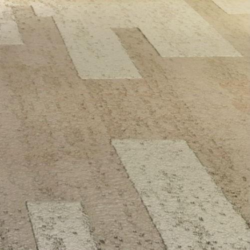 Travertino Floor #1