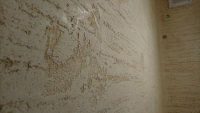 Pietra Antica